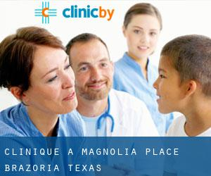 clinique à Magnolia Place (Brazoria, Texas)
