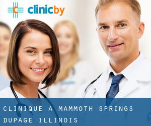 clinique à Mammoth Springs (DuPage, Illinois)